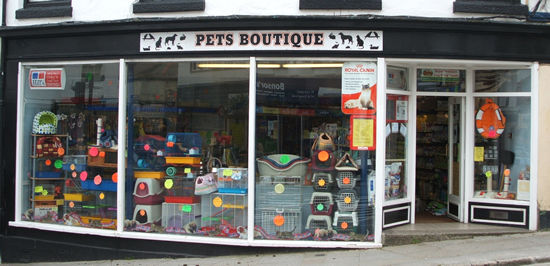 pets boutique cgk pet shop penzance. pet food, toys and health products